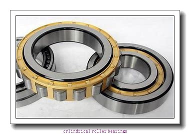 FAG NU220-E-M1-C4  Cylindrical Roller Bearings