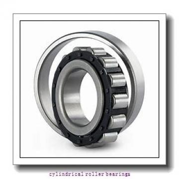 95 mm x 170 mm x 32 mm  FAG NU219-E-TVP2  Cylindrical Roller Bearings
